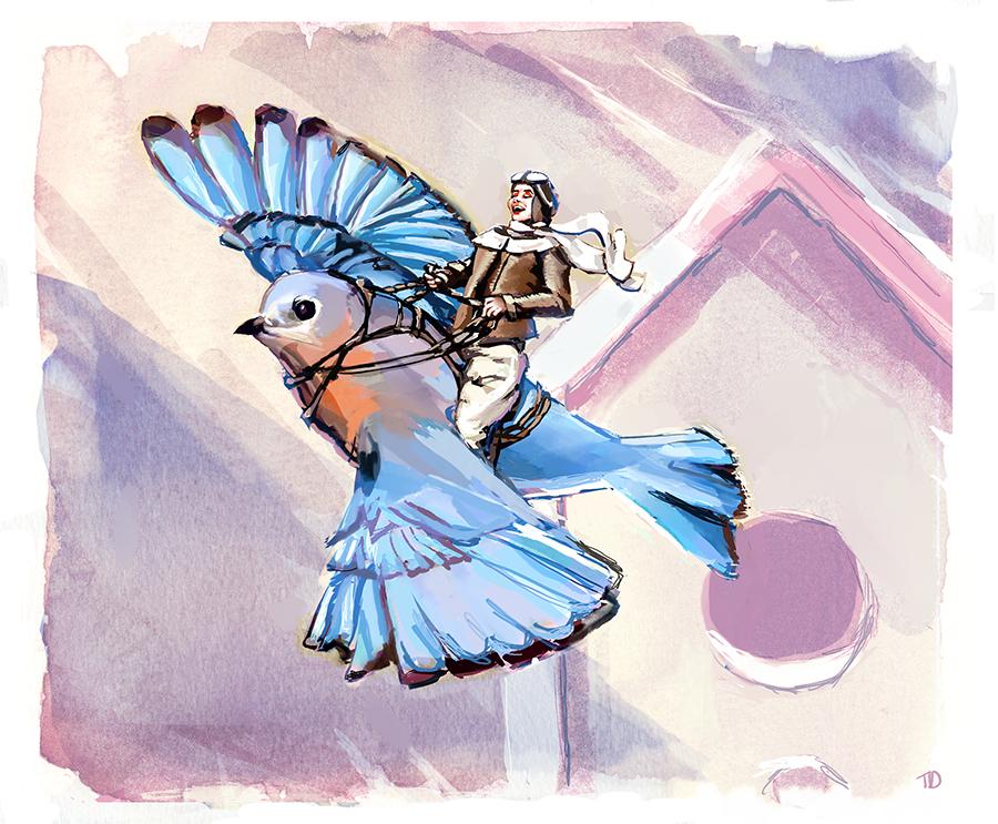 Bluebird Pilot